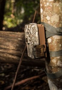 Game Camera Buyers Guide - Battery Life