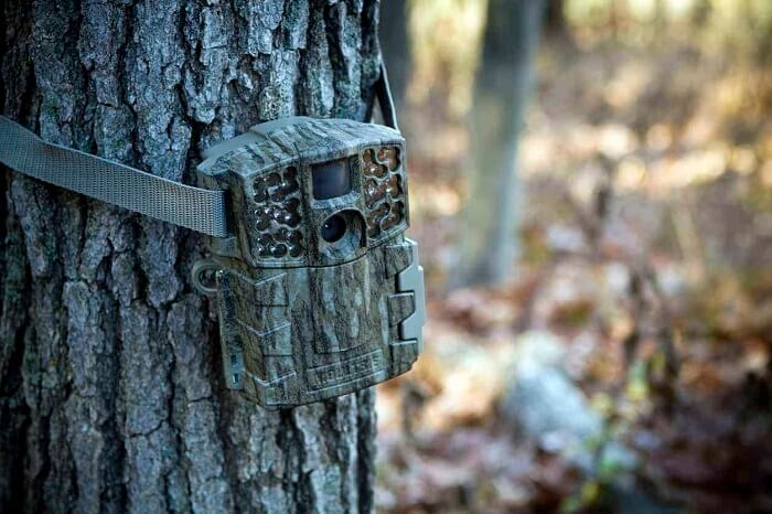 Best Game Trail Camera Reviews - Game Camera World