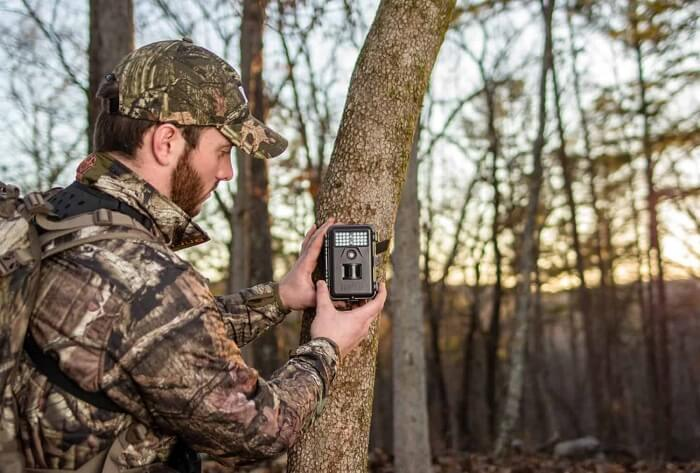 What to look for when shopping-for trail camera - Game Camera World